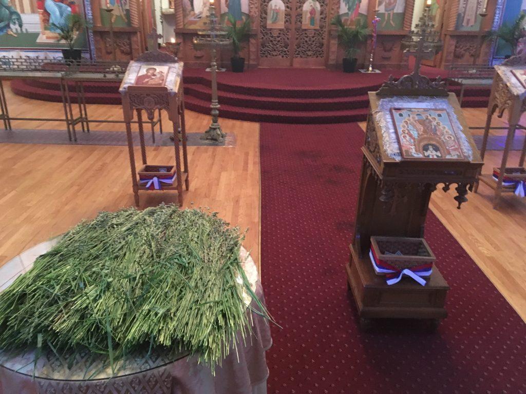 Pentecost (Trinity Sunday)